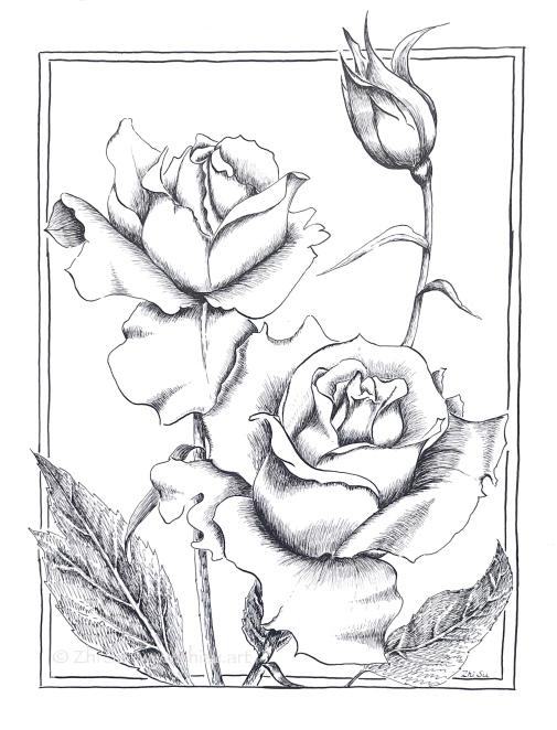 Roses, ink