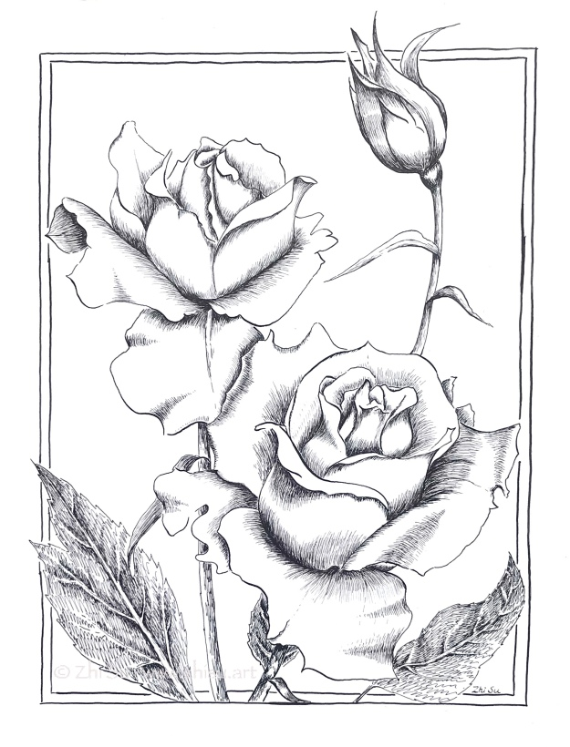 Roses, ink