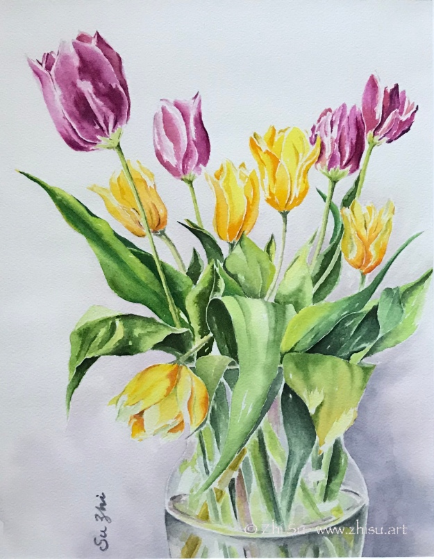 Tulips, watercolor